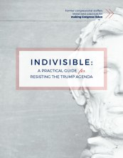 Image result for indivisible a practical guide